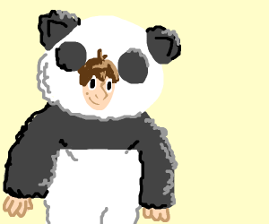 Person dressed as panda