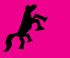 black horse on pink background