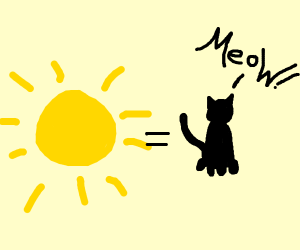the sun is a cat