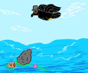 Sir Crow Taking Inventory of Ocean Trash