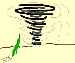 crocodile sucked in tornado