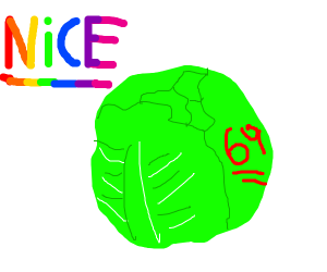 oh boy that some NICE cabbage