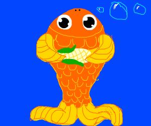 goldfish holding corn