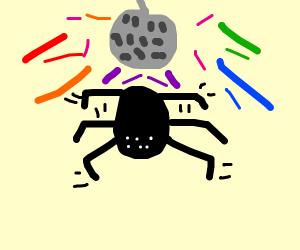 disco spider