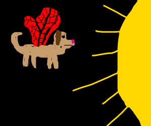 Puppy with wings flying towards the sun