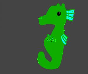 Pregnant seahorse daddy