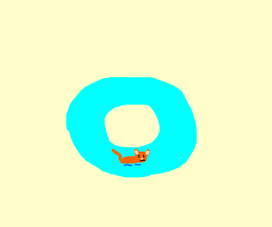 Cat on a pool donut