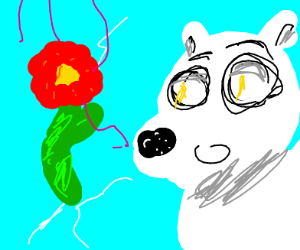 Polar bear smelling a glorious flower