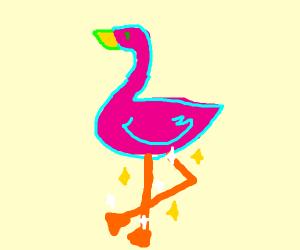 A flamingo with beautiful legs