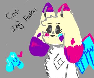 cat x dog