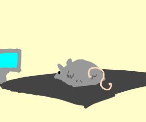 mouse on mousepad
