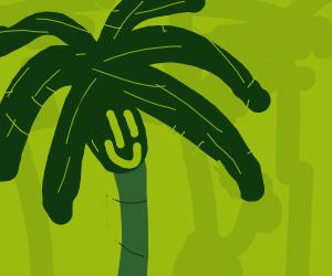 Happy palm tree man