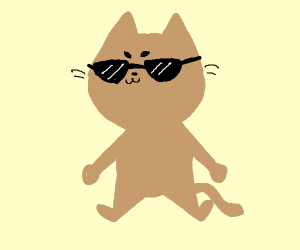 really lame cat wearing sunglasses