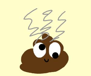 steaming poop