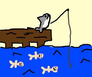 Shark fishing for people