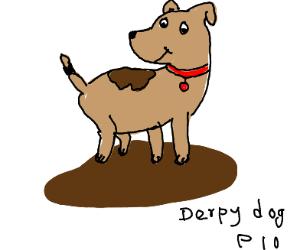 Derpy dog P.I.O