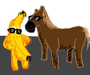 cool BANANA and cool horse