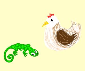 chicken and a lizard