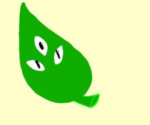 Leaf with eyes