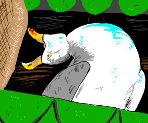 seagull: -iNHALES-