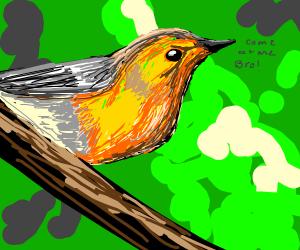 Bird calling you