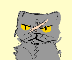 Yellowfang from warrior cats