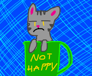 your cat is disappointed and sitting in a mug