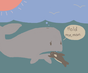 holding whale
