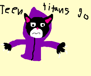 raven from teen titans as a cat