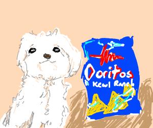 Doges an' Doritos