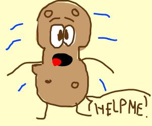 Shaking peanut