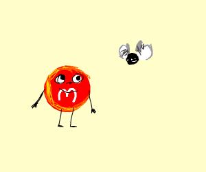 m&m has a fly friend