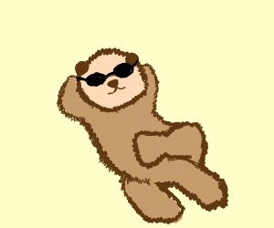 A cool sea otter