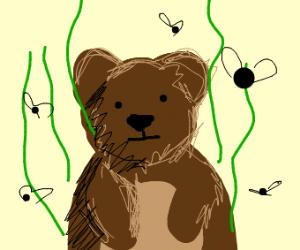 smelly bear