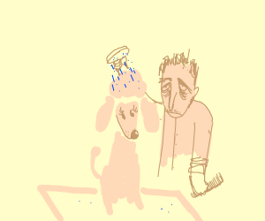 overworked pet groomer, grooms a poodle.