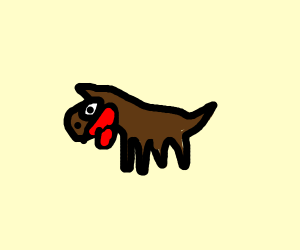 Brown doggie