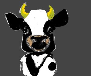 He wants a cow