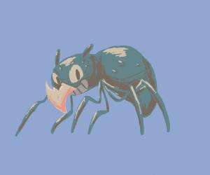 Brid-spider-rino mutant