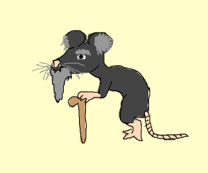 Old man mouse