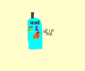 fish in water bottle, help me.