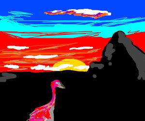 Flamingos sleeping on 1 leg @ sunset