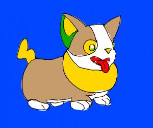 Corgi plus Cat fusion