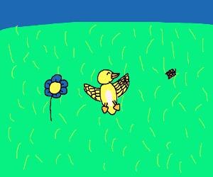 Happy duck in grass
