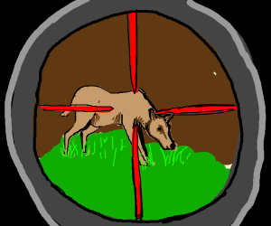 female deer in scope-sights, eating grass
