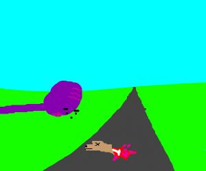 Purple guy looks at road kill questioningly