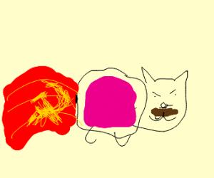 Tac Nayn (Nyan Cat's evil twin)