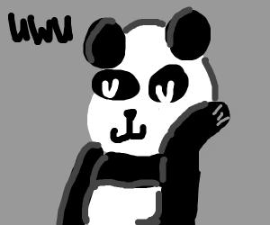 Panda goes uwu