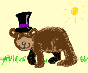 a bear with a black hat