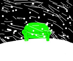 Green sofa in a blizzard