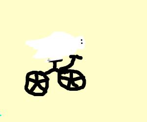 Seal on a bike